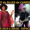 Nuit du Blues de Carpentras 2019