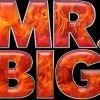 Mr BIG   Tour Dates