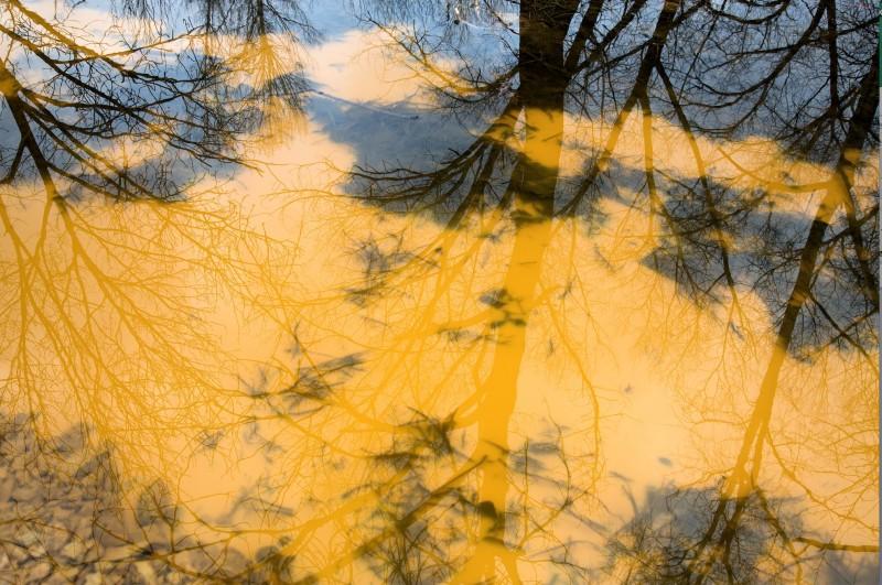 Deleted scene 2 Yury Toroptsov 2013, Russie  Photographie  ©Yury Toroptsov