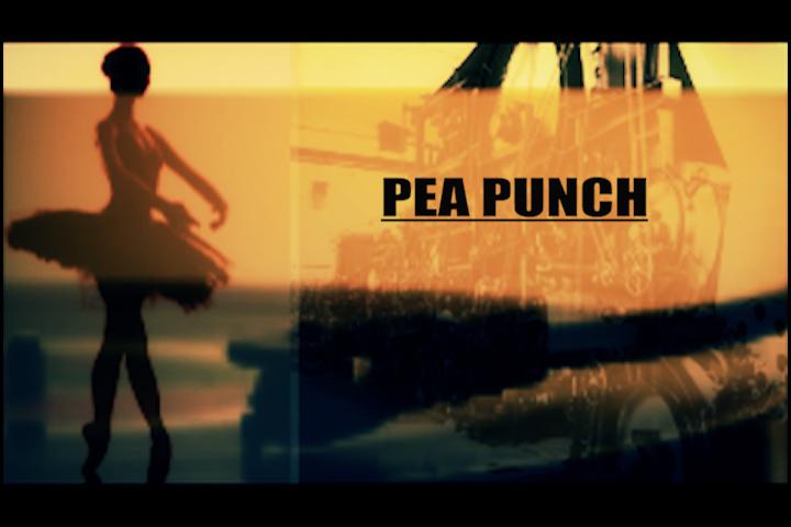 PeaPunchVisu Blackpolice