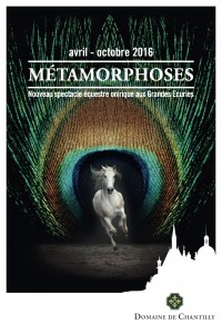 affiche Métamorphoses 40X60 - copie